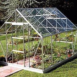 +Base: B&Q Silver Frame Toughened Glass Greenhouse 10 x 8